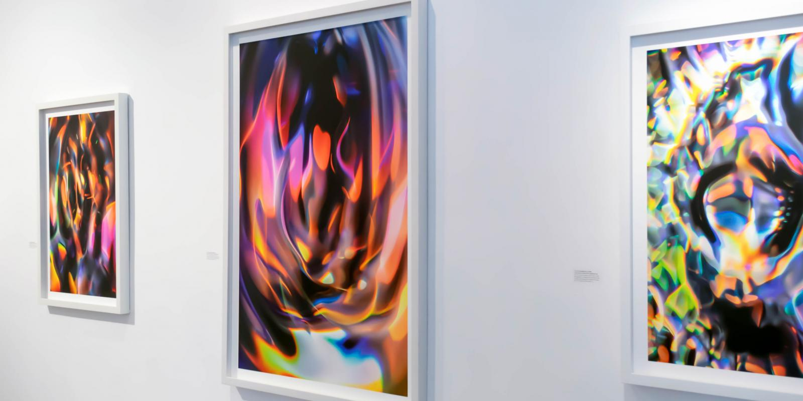 Sasha vom Dorp 15.15 Hz - 2018 Exhibition