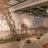 River Run – Expecto Patronus and Nest