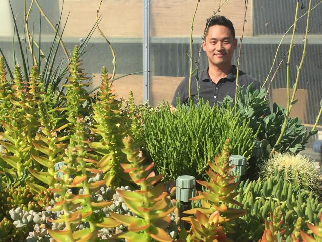 Post-doctoral researcher Jason Yeom worked on green roof systems integrated with radiant cooling at the Lyle Center