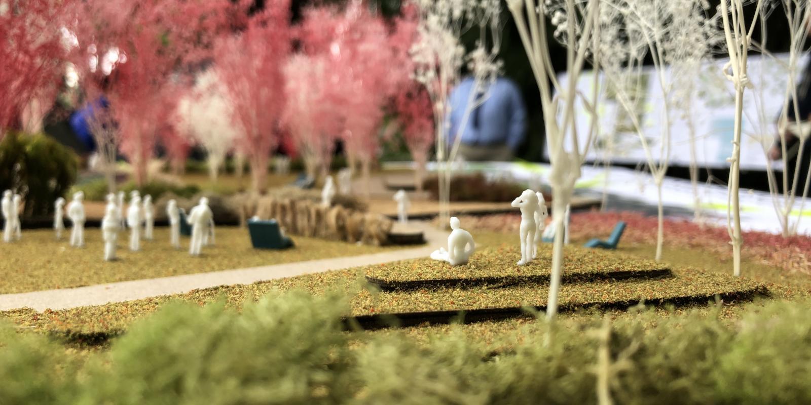 Landscape architecture model, undergraduate studio (Andrew Wilcox)