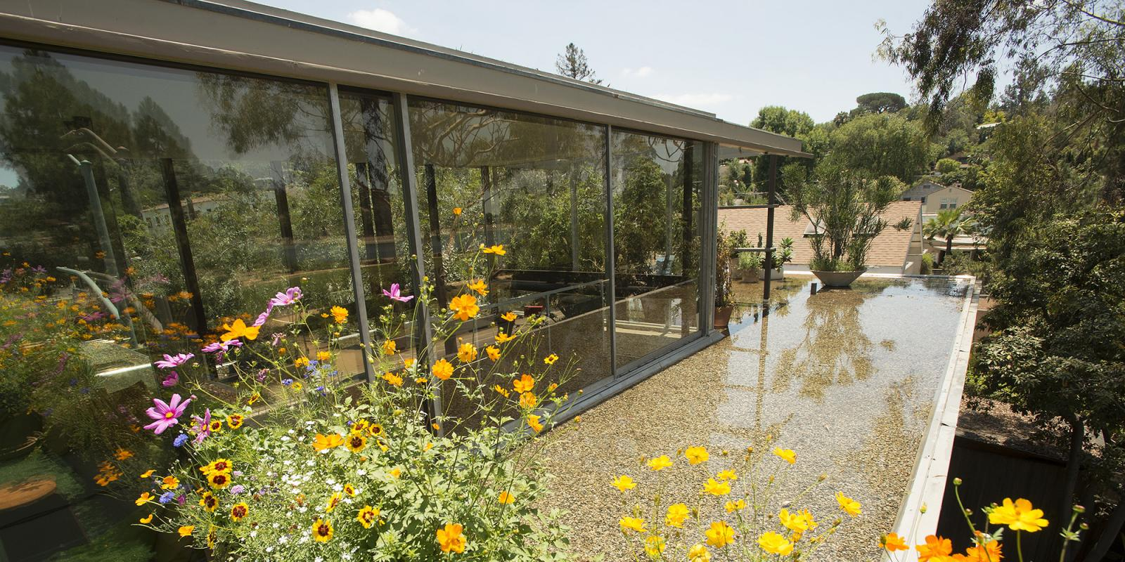 Neutra VDL roof in spring