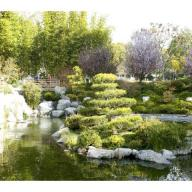 Landscape architecture lecturer Keiji Uesugi will lead a walking tour of the Aratani Japanese Garden.
